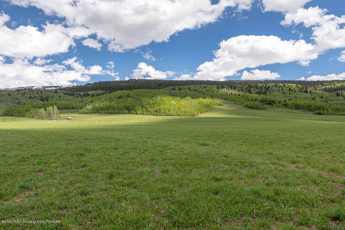 Nelson Spring Ranch - Photo 1