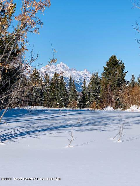 Address Not Published, Wilson, WY 83014 (MLS #20-24) :: Sage Realty Group