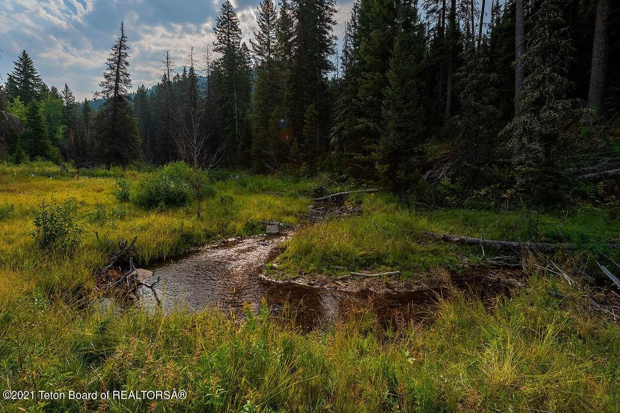 Lanes Creek Rd - Photo 1