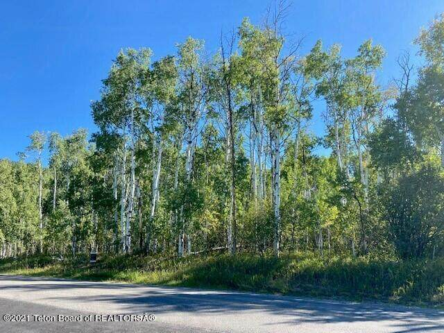 Muddy String Rd., Star Valley Ranch, WY 83127 (MLS #21-3200) :: West Group Real Estate