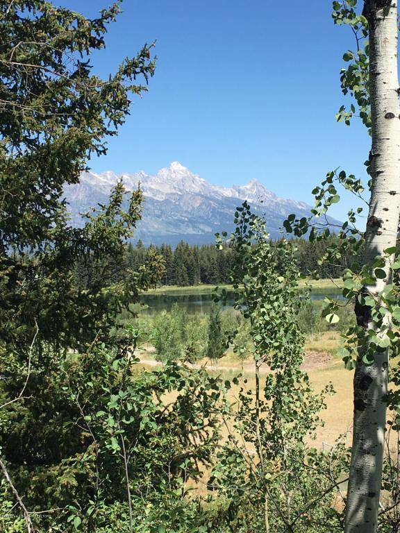 950 W Bar Bc Ranch Rd, Jackson, WY 83001 (MLS #16-2316) :: Sage Realty Group