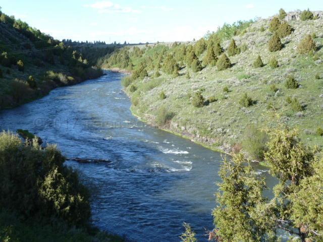 9815 Angler Point, Tetonia, ID 83452 (MLS #17-1213) :: Sage Realty Group