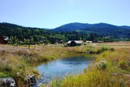 49 Warm Creek Ln - Photo 1
