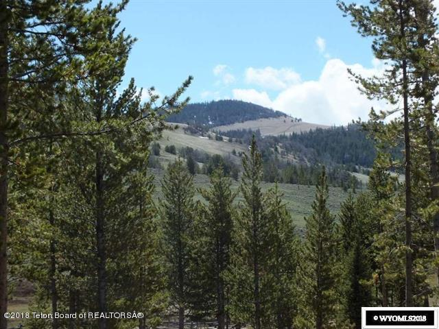 465 Union Pass Rd, Dubois, WY 82513 (MLS #18-250) :: Sage Realty Group