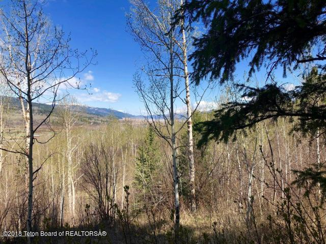 LOT 7 Dancer Circle, Alpine, WY 83128 (MLS #18-407) :: Sage Realty Group