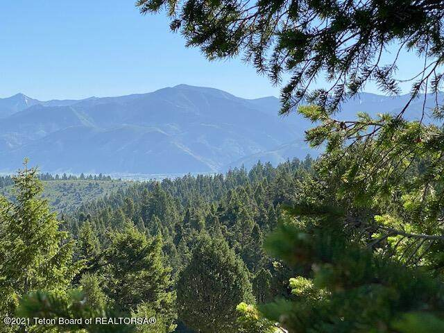 NE4 SW4 S Timber Ridge Drive, Fairview, WY 83119 (MLS #21-2037) :: Coldwell Banker Mountain Properties