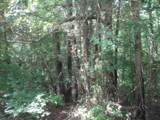 TBD Hidden Valley - Photo 10
