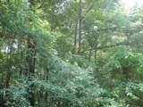 TBD Hidden Valley - Photo 6