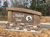 8203 Teal Rd. Lot#30 - Photo 1