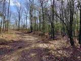 4.91 Acres Cook Rd - Photo 13