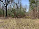 4.91 Acres Cook Rd - Photo 16