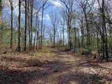 4.91 Acres Cook Rd - Photo 19
