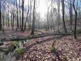 4.91 Acres Cook Rd - Photo 24