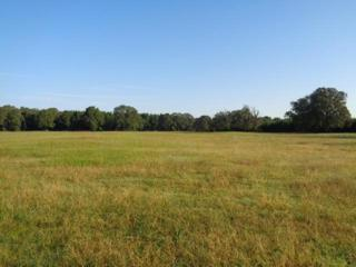 7+/- ac Hwy 82, DeKalb, TX 75559 (MLS #97789) :: The Chad Raney Team