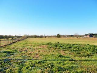 TBD Cr 4251, DeKalb, TX 75559 (MLS #97871) :: The Chad Raney Team