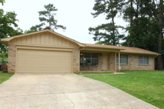 33 E Greenfield, Wake Village, TX 75501 (MLS #98391) :: The Chad Raney Team