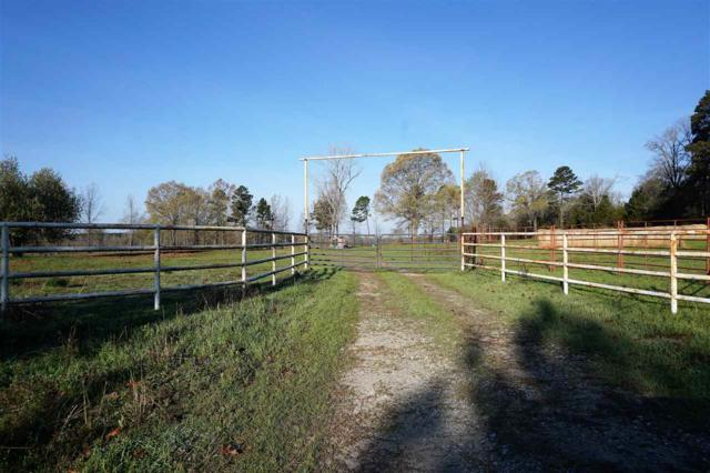 419.6 +/- ac Fm 990, Simms, TX 75574 (MLS #100221) :: Better Homes and Gardens Real Estate Infinity