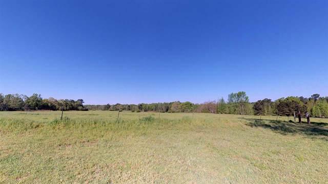 3916 S Kings Hwy, Texarkana, TX 75501 (MLS #100450) :: ScaleSpace Realty