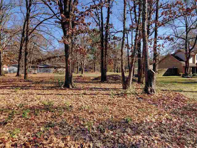 504 E 9th, Hooks, TX 75561 (MLS #101932) :: ScaleSpace Realty