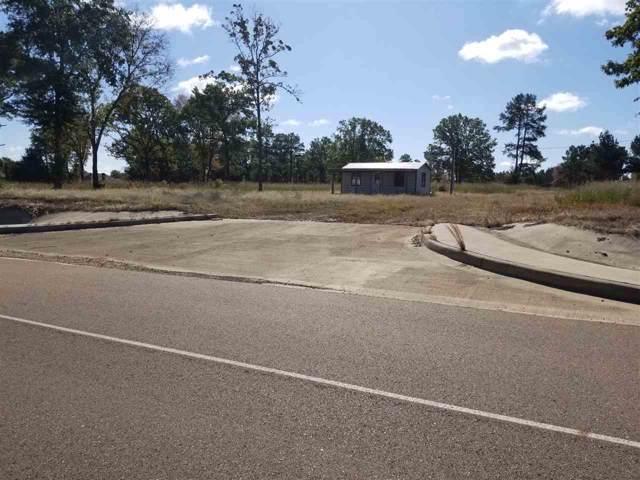 30.37 acres I-30 S & Mockingbird, Hooks, TX 75561 (MLS #103951) :: ScaleSpace Realty