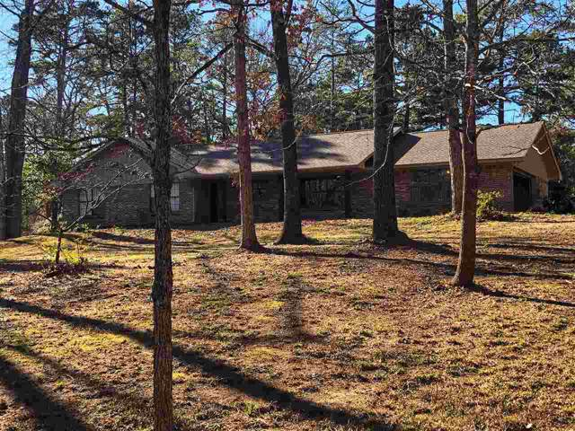 314 Ridgewood Cir, Atlanta, TX 75551 (MLS #104371) :: ScaleSpace Realty