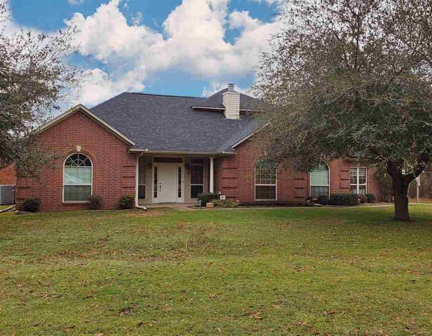 1270 Cr 3675, Queen City, TX 75572 (MLS #104388) :: ScaleSpace Realty