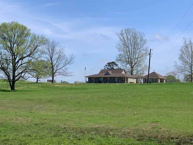 960 County Road 2230, Douglassville, TX 75560 (MLS #104697) :: ScaleSpace Realty