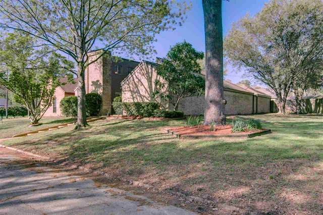 3603 Wood, Texarkana, TX 75503 (MLS #104701) :: ScaleSpace Realty