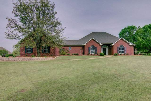8210 Quail Hollow, Texarkana, TX 75503 (MLS #104706) :: ScaleSpace Realty