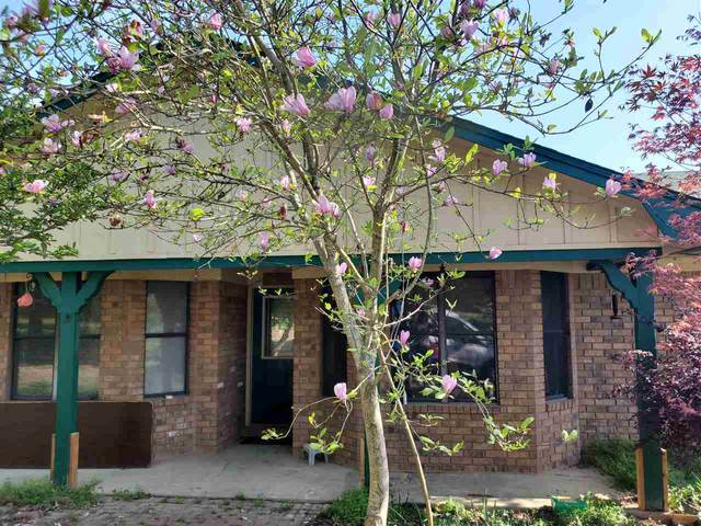 925 Fm 3098, Maud, TX 75573 (MLS #104721) :: ScaleSpace Realty