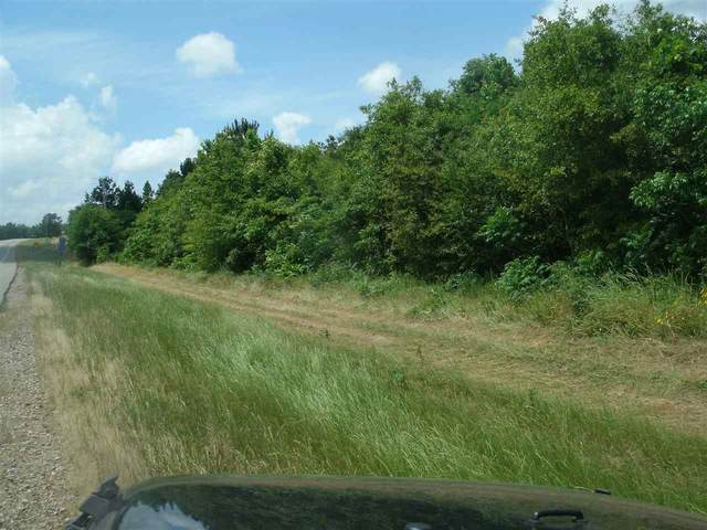 Lot 46 State Highway 196, Texarkana, AR 71854 (MLS #104895) :: Better Homes and Gardens Real Estate Infinity