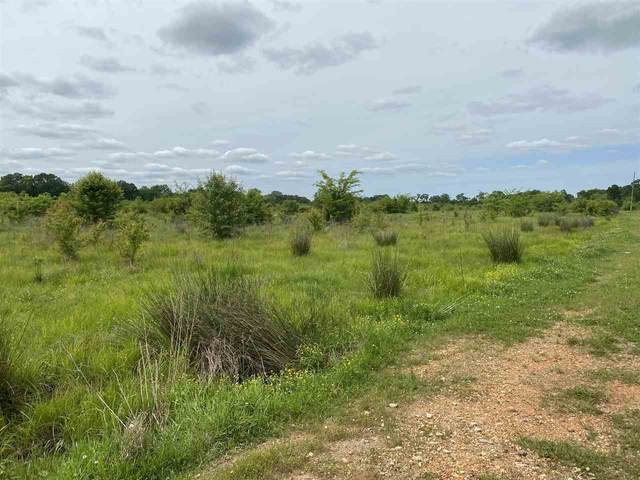 60 acres State Highway 296, Texarkana, AR 71854 (MLS #104932) :: Better Homes and Gardens Real Estate Infinity