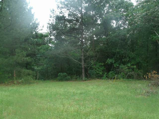 186 Lindsey Ln, Texarkana, AR 71854 (MLS #104962) :: Better Homes and Gardens Real Estate Infinity