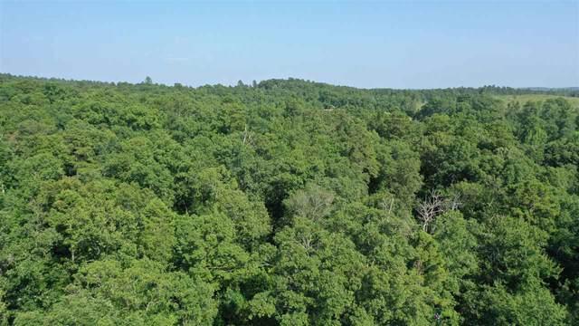 TBD Mc 18, Texarkana, AR 71840 (MLS #105275) :: Better Homes and Gardens Real Estate Infinity