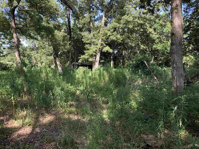 TBD Brower Lane, Texarkana, TX 75501 (MLS #105412) :: Better Homes and Gardens Real Estate Infinity