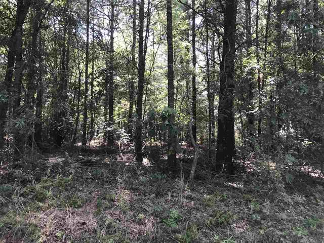 TBD C.R. 4108, DeKalb, TX 75559 (MLS #105518) :: Better Homes and Gardens Real Estate Infinity