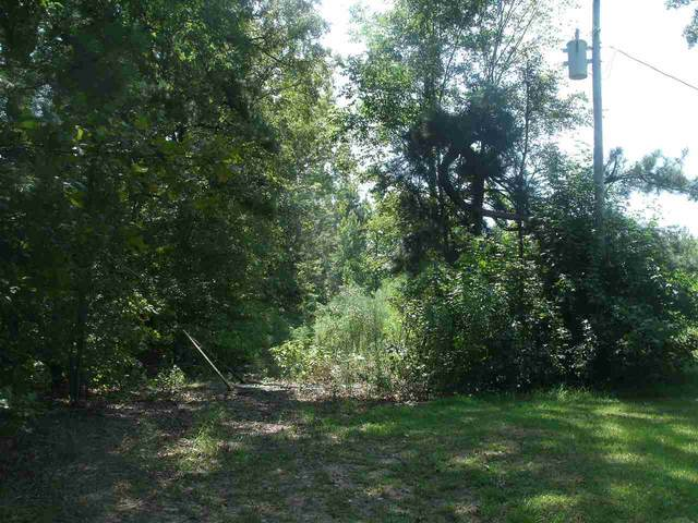30 +/- Acres Mc 211, Fouke, AR 71837 (MLS #105619) :: Better Homes and Gardens Real Estate Infinity