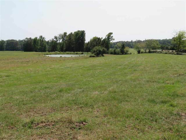 98.84± ac TBD County Road 2738, Douglassville, TX 75568 (MLS #105665) :: Better Homes and Gardens Real Estate Infinity