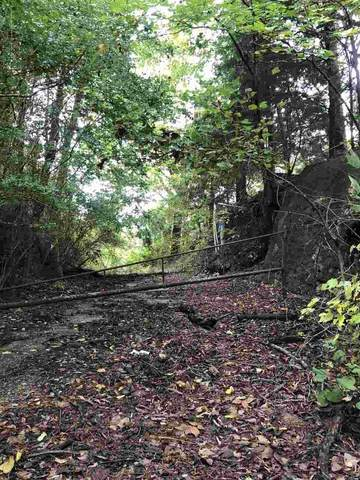 Robin Lane, Saratoga, AR 71859 (MLS #105713) :: Better Homes and Gardens Real Estate Infinity