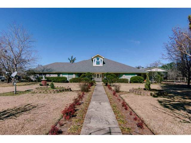 2051 Cr 4105, New Boston, TX 75570 (MLS #105741) :: Better Homes and Gardens Real Estate Infinity