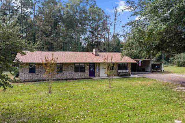 26785 W Hwy 77, Naples, TX 75568 (MLS #105862) :: Better Homes and Gardens Real Estate Infinity