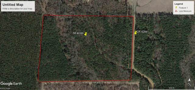 CR 4284 Fm 990, Simms, TX 75574 (MLS #105964) :: Better Homes and Gardens Real Estate Infinity