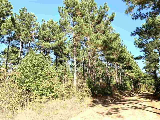 TBD-1 Cr 2235 (Field 1), Douglassville, TX 75560 (MLS #106097) :: Better Homes and Gardens Real Estate Infinity