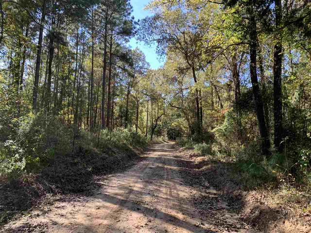 TBD-2 County Road 2235 (Field 2), Douglassville, TX 75560 (MLS #106099) :: Better Homes and Gardens Real Estate Infinity