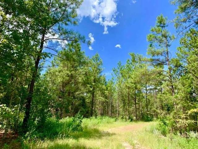 TBD Cr 4346, Bivins, TX 75555 (MLS #106114) :: Better Homes and Gardens Real Estate Infinity