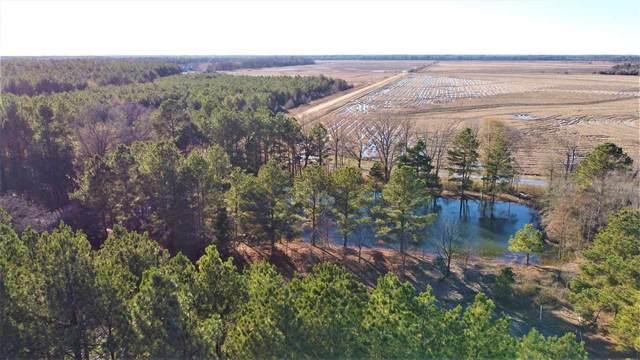3929 Cr 3204, DeKalb, TX 75559 (MLS #106134) :: Better Homes and Gardens Real Estate Infinity