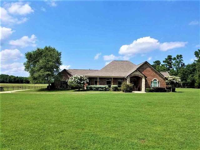 188 Cr 1106, Maud, TX 75567 (MLS #106171) :: Better Homes and Gardens Real Estate Infinity
