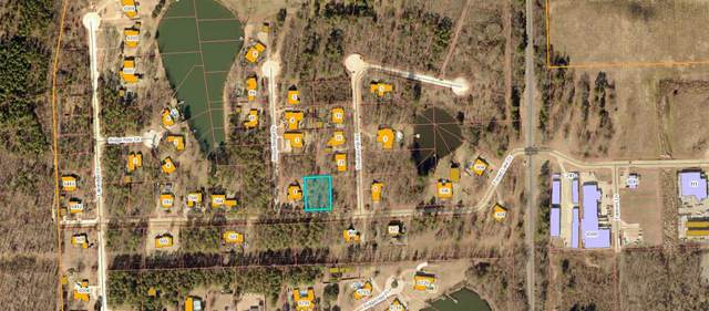 Lot 6 Forest Lake Drive, Texarkana, TX 75503 (MLS #106236) :: Better Homes and Gardens Real Estate Infinity