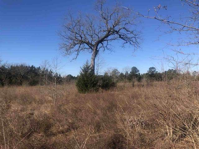 6 ac +/- Cr 1242, Linden, TX 75563 (MLS #106390) :: Better Homes and Gardens Real Estate Infinity