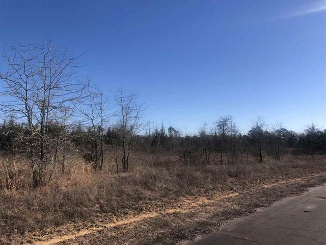 36 ac +/- Cr 1242, Linden, TX 75563 (MLS #106391) :: Better Homes and Gardens Real Estate Infinity